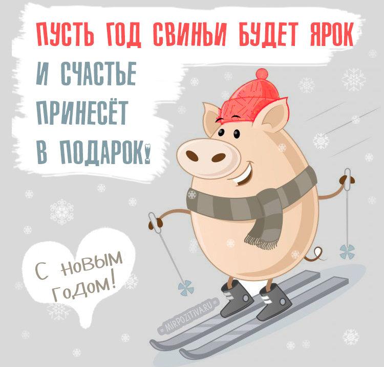 Тосты на новый год 2019 свиньи (кабана): прикольные, смешные, короткие