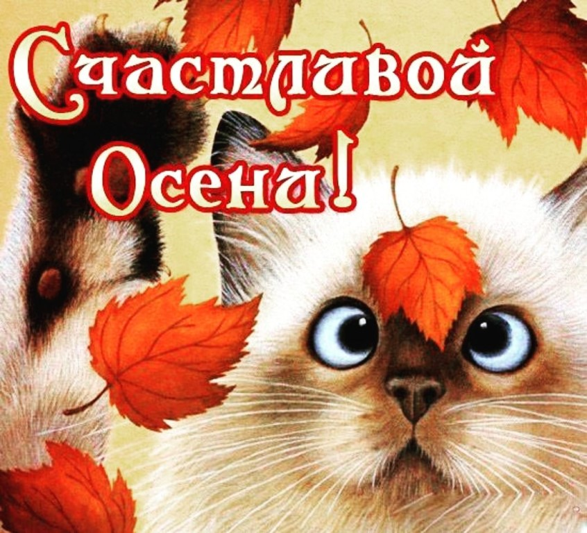Красивые и прикольные поздравления с  осенью (с первым днем осени) — история и дата праздника