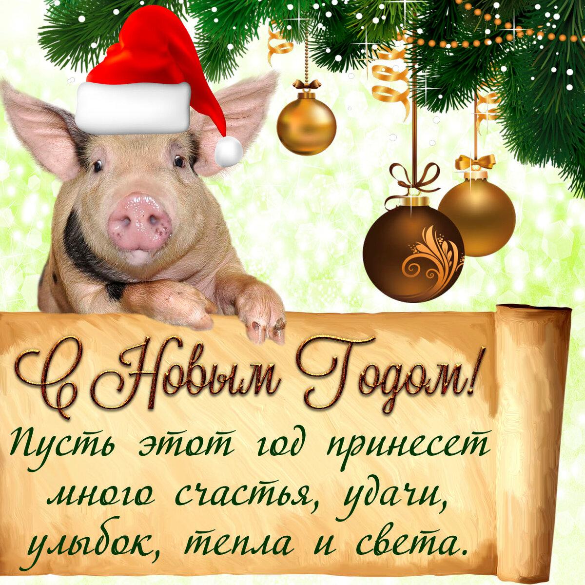 Тосты на новый год свиньи 2019 - смешные, короткие, прикольные