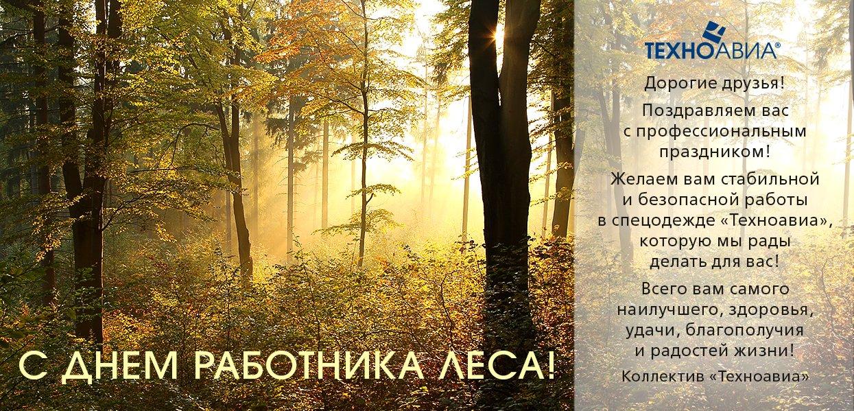 Красивые и прикольные поздравления с днем работников леса